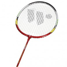 Zestaw-rakiet-do-badmintona-aluminiowych-w-pokrowcu-Alumtec-329K-WISH_6